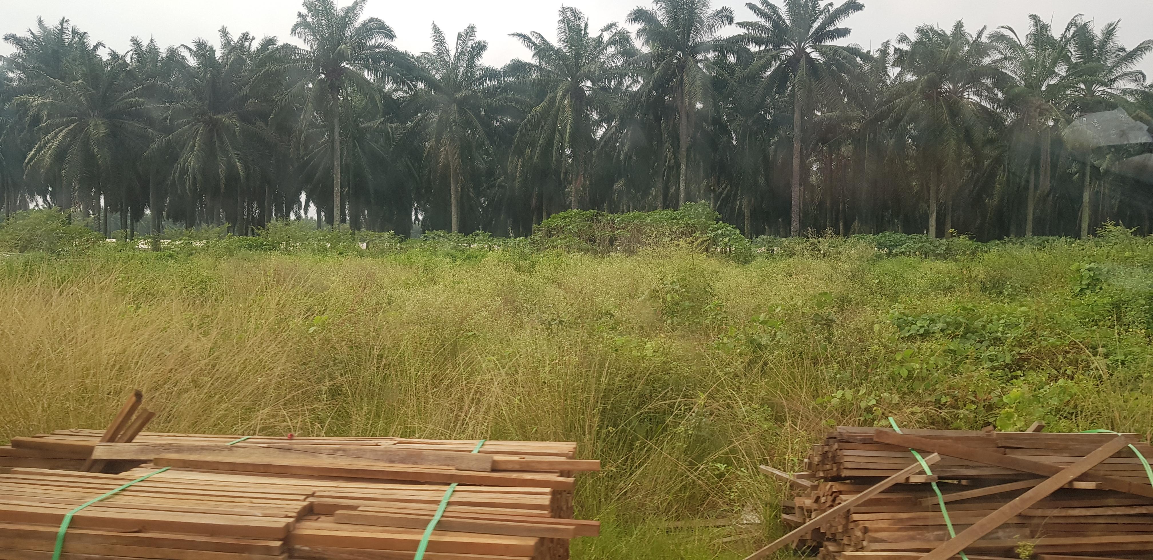 Penang 10 acres south Batu Kawan Potential for industrial
