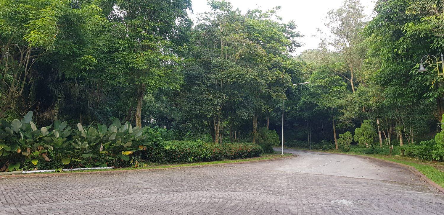 Damansara Country Heights 7 adjoining bungalow lots