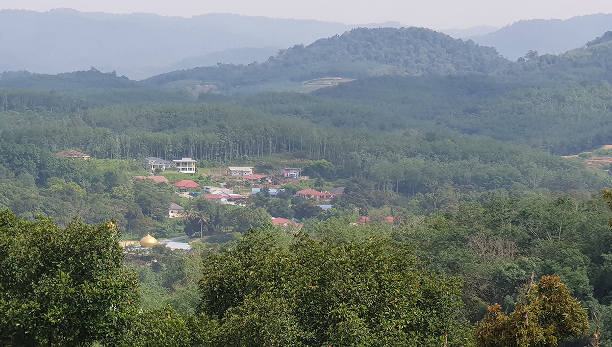 Sg Tekali 27 acres durian hill top view of surrounding