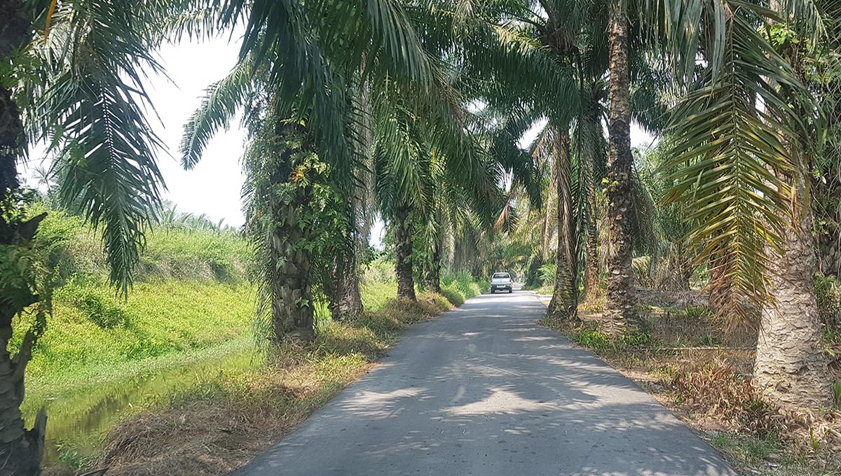 Pantai Remis 2 acres flat land current road