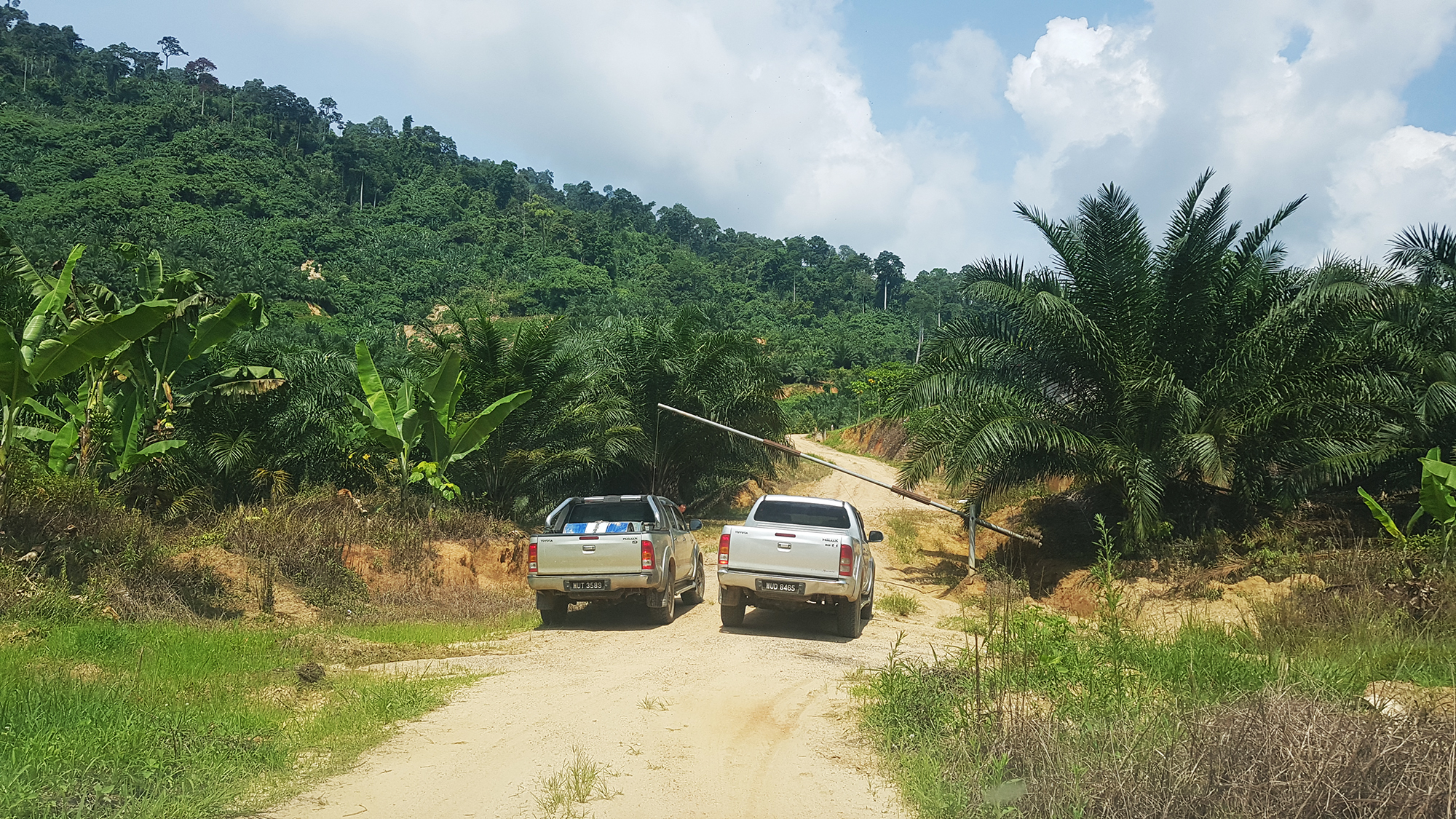 Alternative entrance to 388 acres - 1 lot from main road