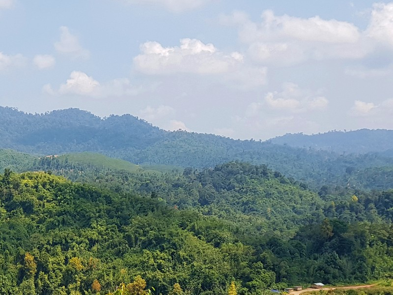 Cameron Highlands, Lojing Kelantan – 350 acres Agriculture Land for Mixed Farming (Low entry cost into agriculture venture)