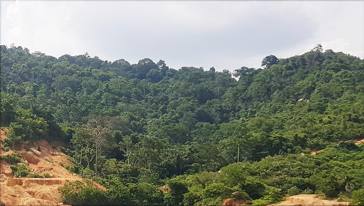 Tampin Granite hill