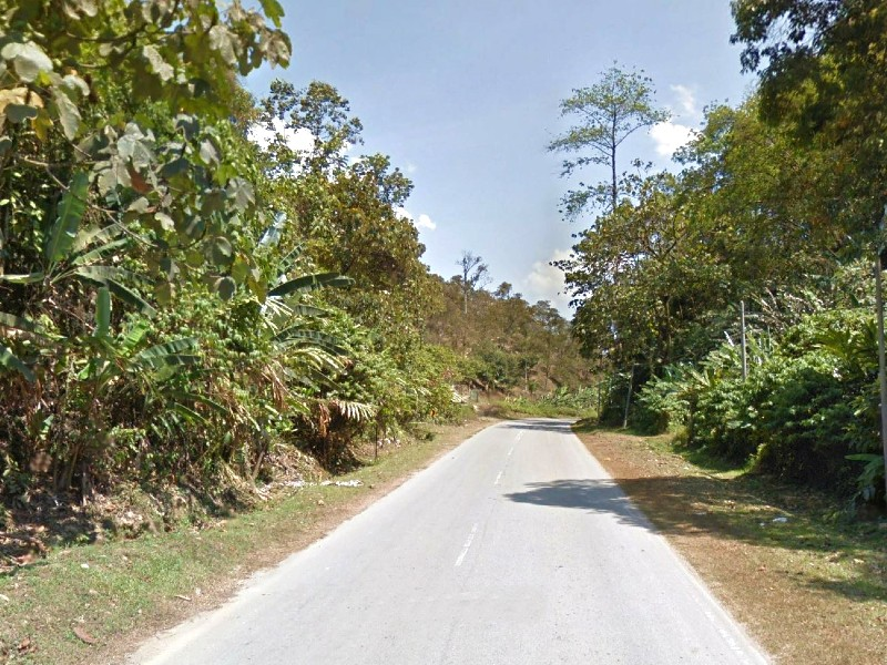 Sang Lee, Bentong – 17.5 acres Freehold Vacant Agriculture land (Potential for Durian Plantation, adjoining another 18 acres with main road frontage)