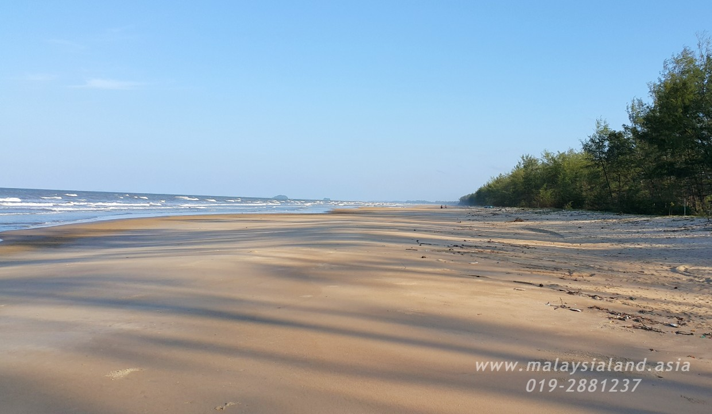 Website - Rompin Beach 8